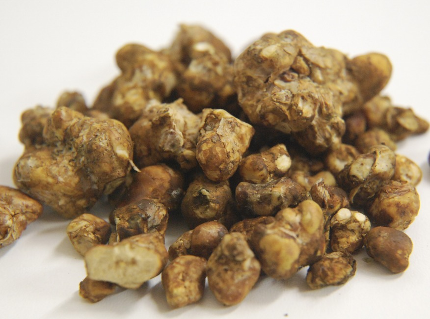 Everything you need to know about Magic Truffles