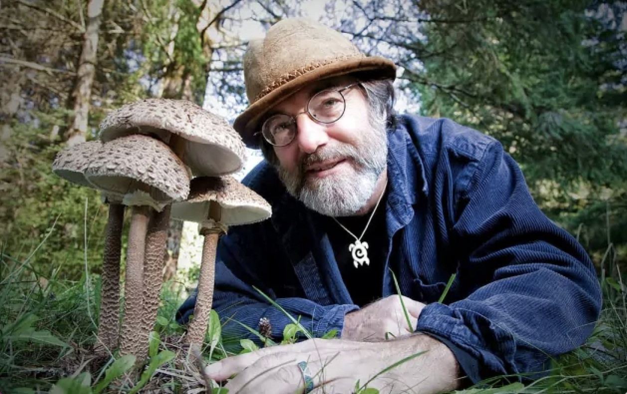 The Paul Stamets Stack Method: How to Take Microdosing to the Next Level